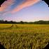 Zemědělská půda