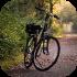Treková kola