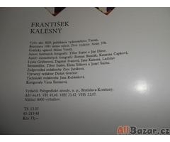 Habáni na Slovensku – František Kalesný