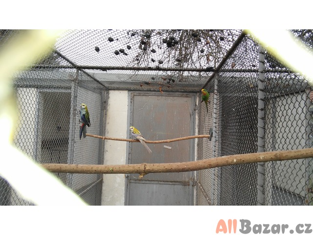 Koupelnov skka | Kenovice | Bazar a inzerce zdarma - All