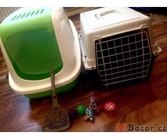 Kočičí záchod, přepravka a taky hračky