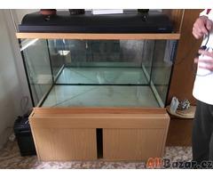 Prodám komplet akvárium 300L