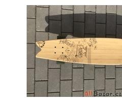 Longboard Dusters Snapshot