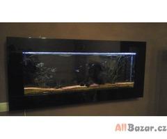 nastěnné akvarium komplet