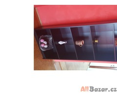 Knihovna+konferenční stolek