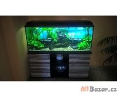 240l akvárium, dekorace, filtrace