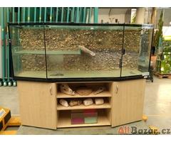 Akvárium float8mm +skříňka d 200 x š 55x v 75cm