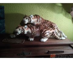 Párek tygrů na lovu