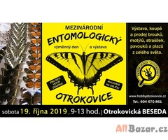 Entomologická výstava, OTROKOVICE, 19.10.2019