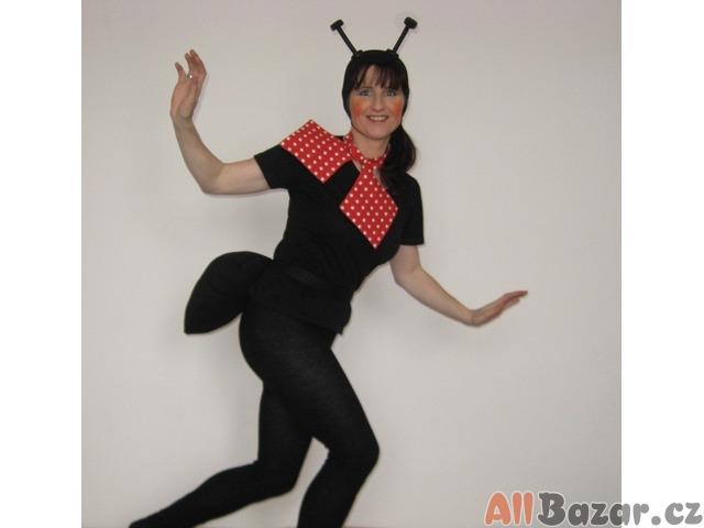 Karnevalový kostým - mravenec dospělák