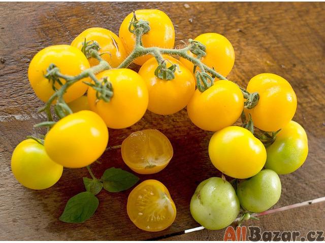 Rajče Golden Sunburst - semena