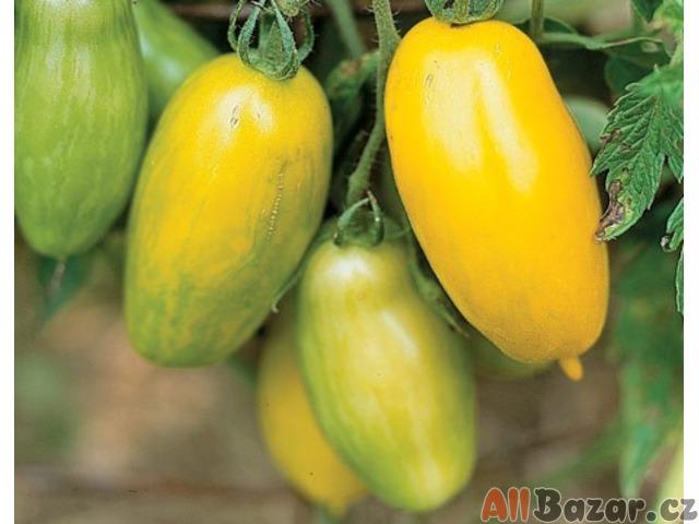 Rajče Banana Leggs - semena