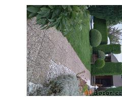prodej zahrady s chatou v Opavě